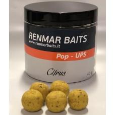 Pop-Ups  Citrus